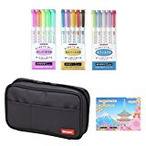 Lihit Lab Pen Case & Zebra MILDLINER Bundle Set schwarz
